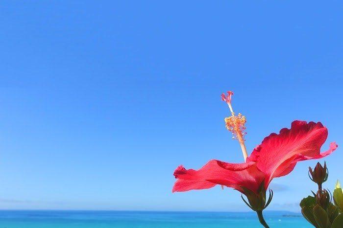 【宮古島アラフィフ女ひとり旅】宿泊するなら平良をおすすめする理由