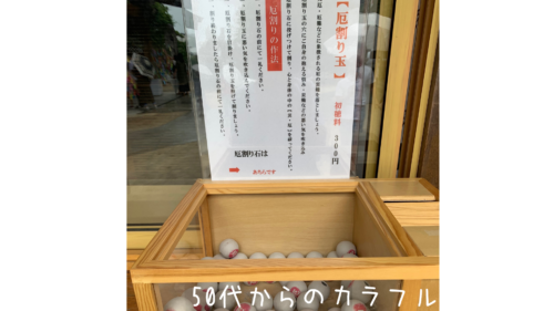 福岡県あじさいの手水舎がある【春日神社】期間はいつまで?